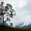 Switzerland by mountain bike: Alpine Route 1 :
